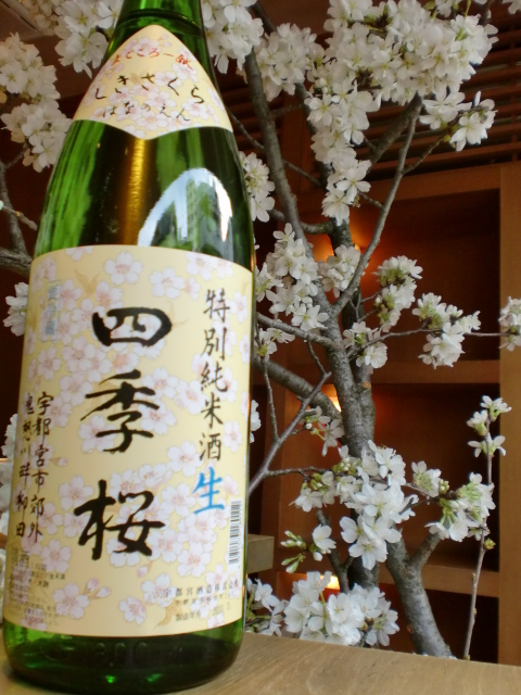 池尻おわんのブログ-四季桜ボトル