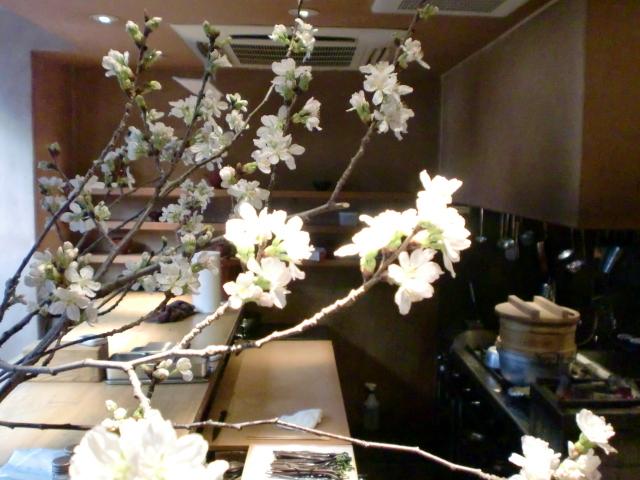 池尻おわんのブログ-ソメイヨシノ4
